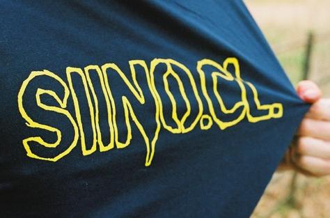 Siino